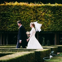 clandon park wedding photograph of bride and groom in the gardens