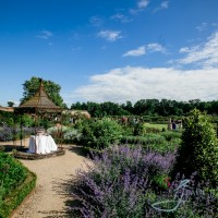 cake set up in the garden s at walled garden cowdray, wedding photography