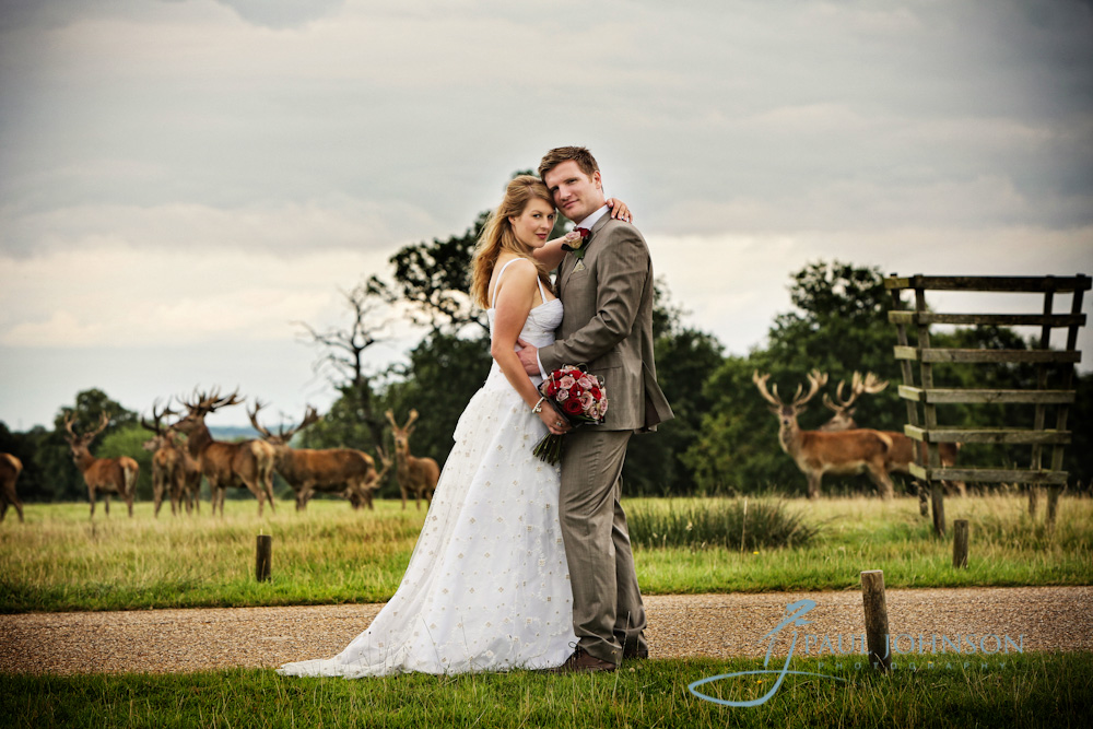 wedding photograph at woburn abbey in the ground with deer