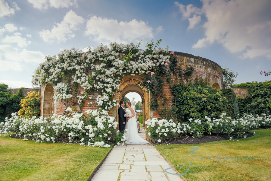 The rose garden wall at Hever Castle. White roses in full bloom with bride and groom